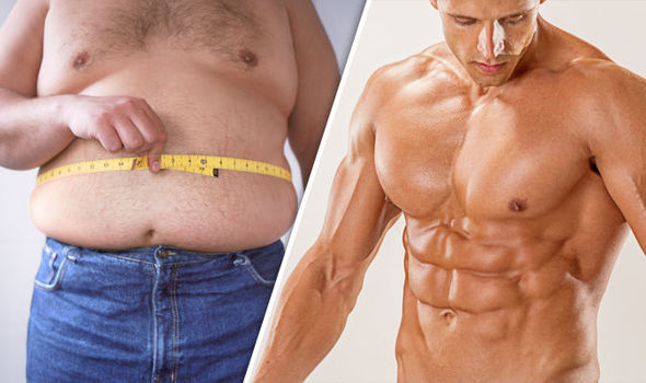 HGH fat loss